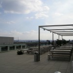 Roof Garden at Blue Fin Building